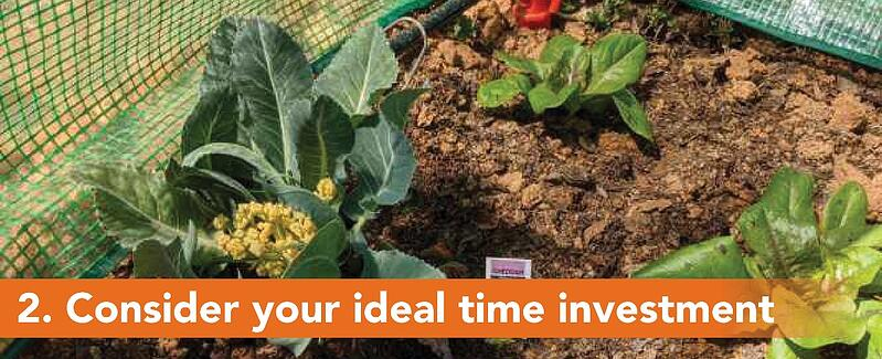 2. Consider your ideal time investment