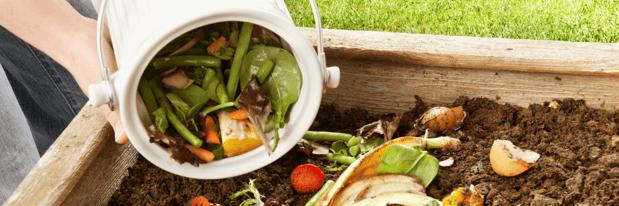 6 - Compost