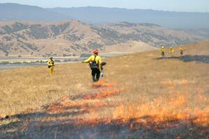 CRID - Prescribed Burn - DT - JUN-18-2007 - 11