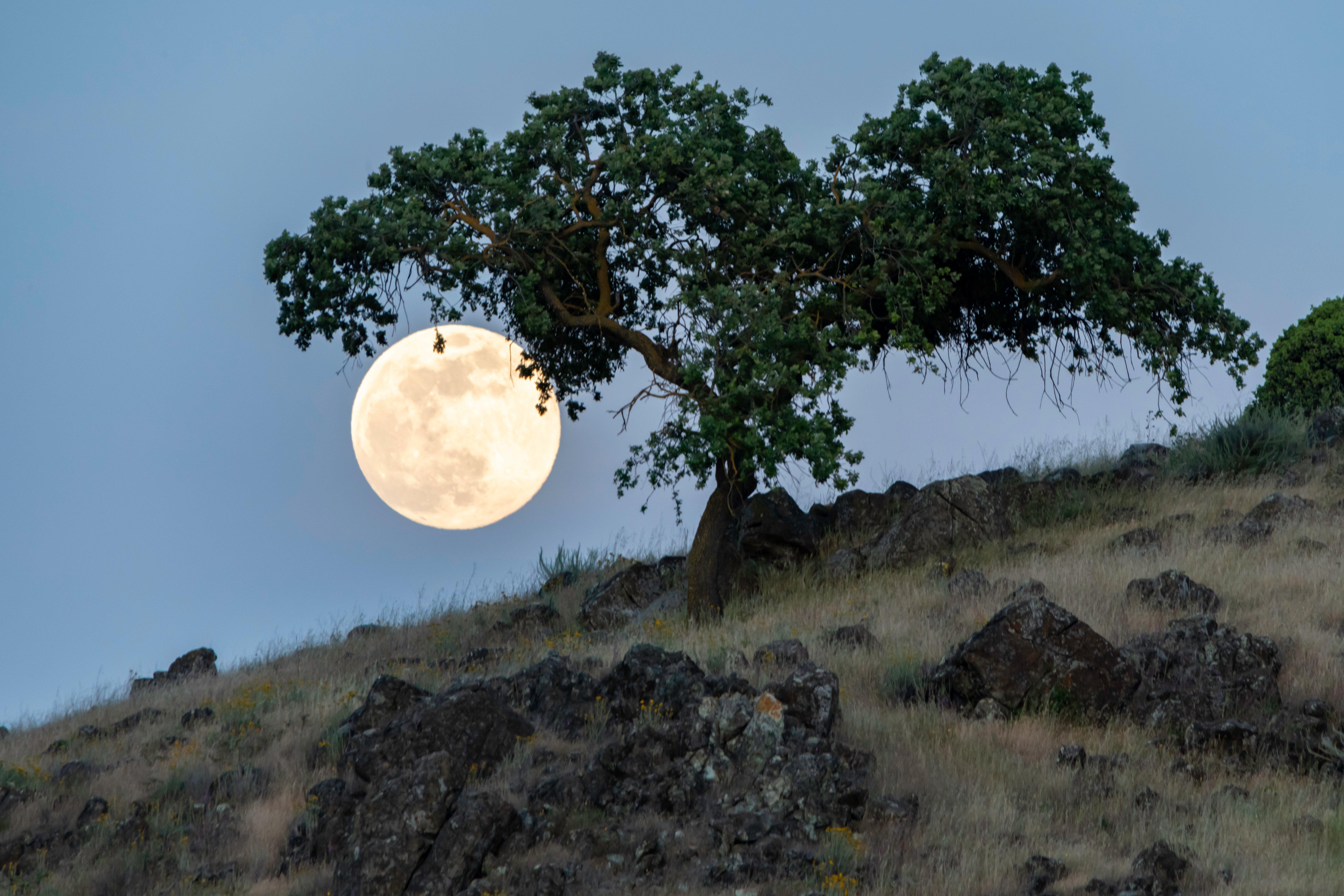 CVAL - Full Moon - D.Neumann - 2020-05-05 - 1