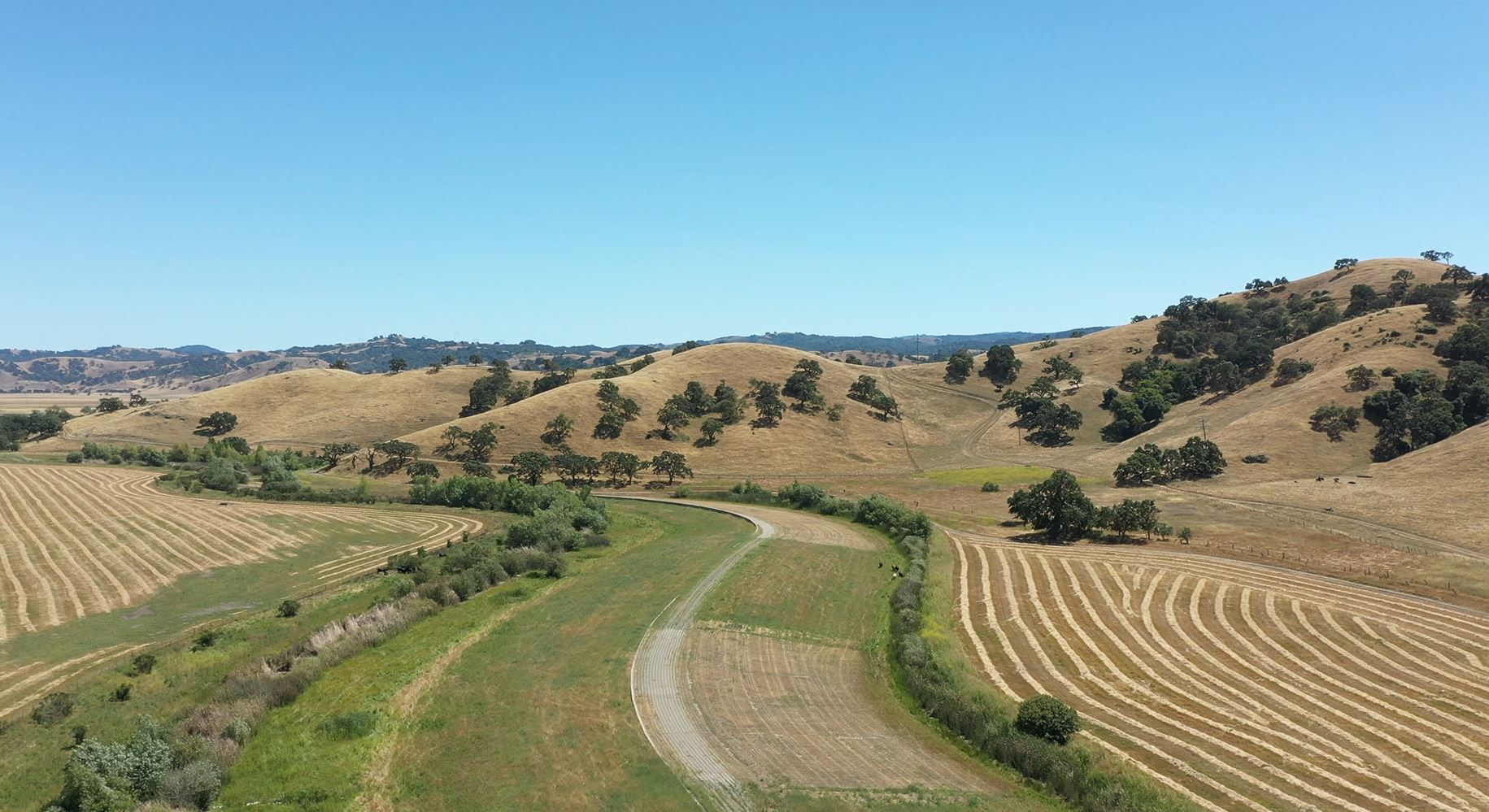 Green and golden hills under blue sky with curving trail