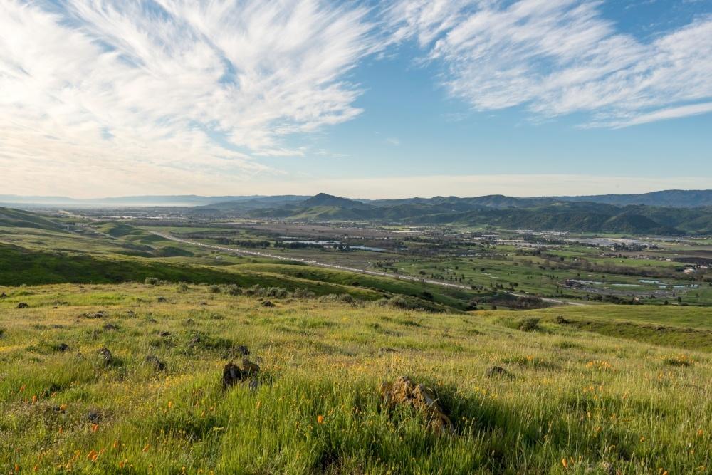 Coyote Ridge - Landscapes - DN - 3-19-16 - 19-036533-edited