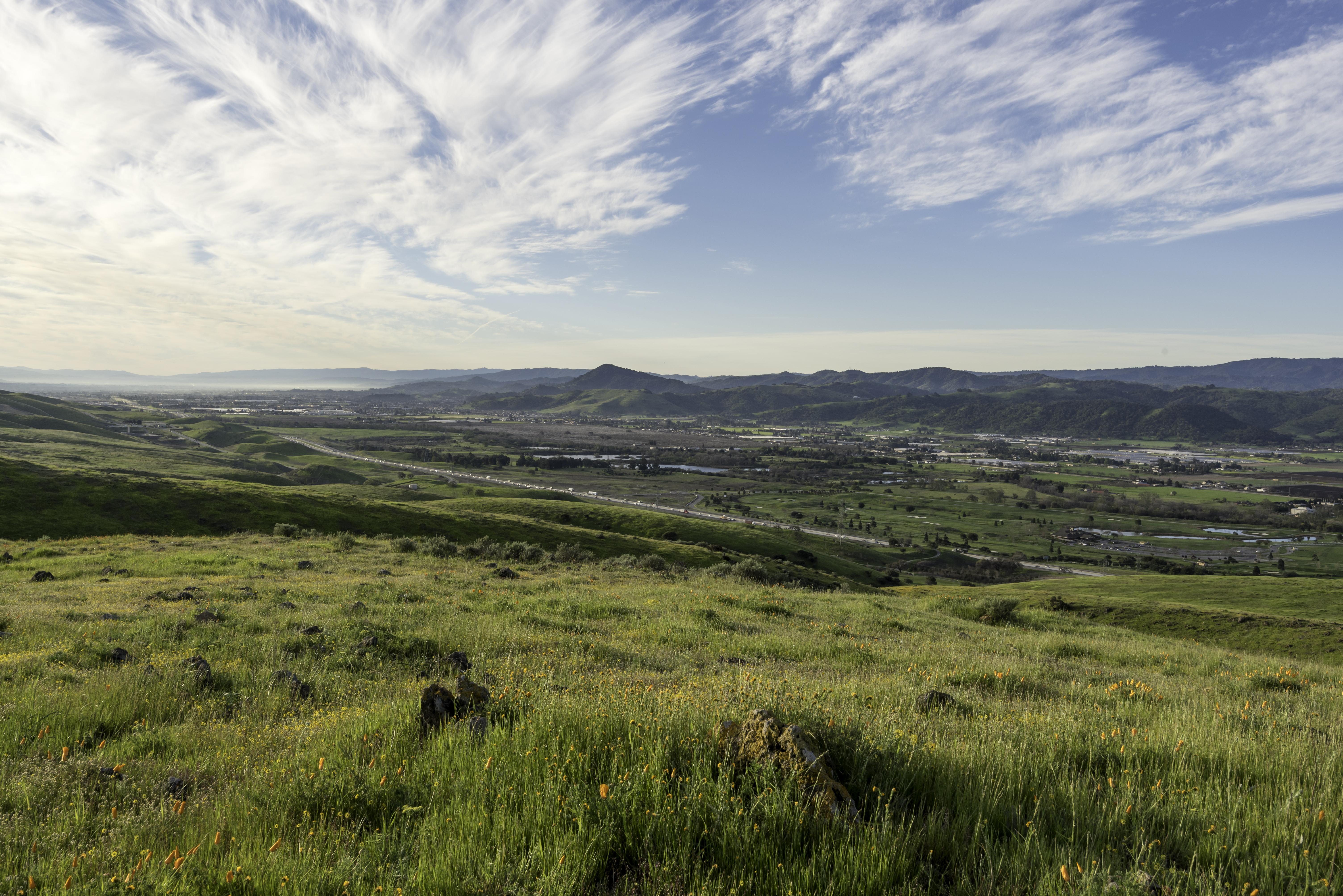 Coyote Ridge - Landscapes - DN - 3-19-16 - 19-1