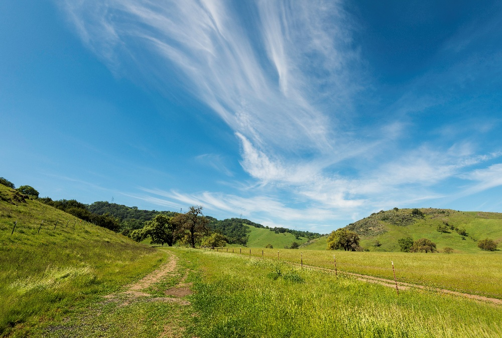 Coyote Valley - Landscapes - DN - 3-22-2016 - 19-2-1