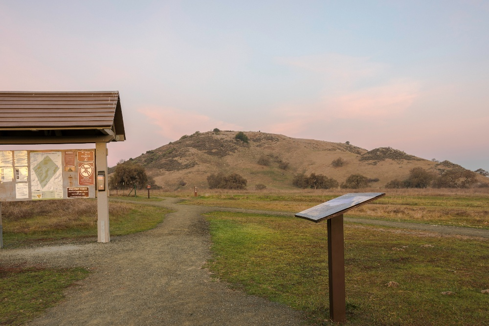 Coyote Valley OSP - Landscapes - DN - Dec-29-2017 - 2-1