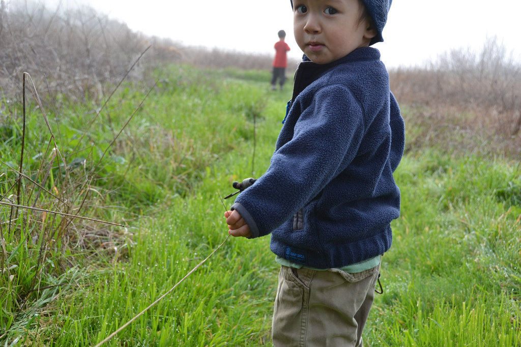 Little Boy in Field - AB - 12-01-2011