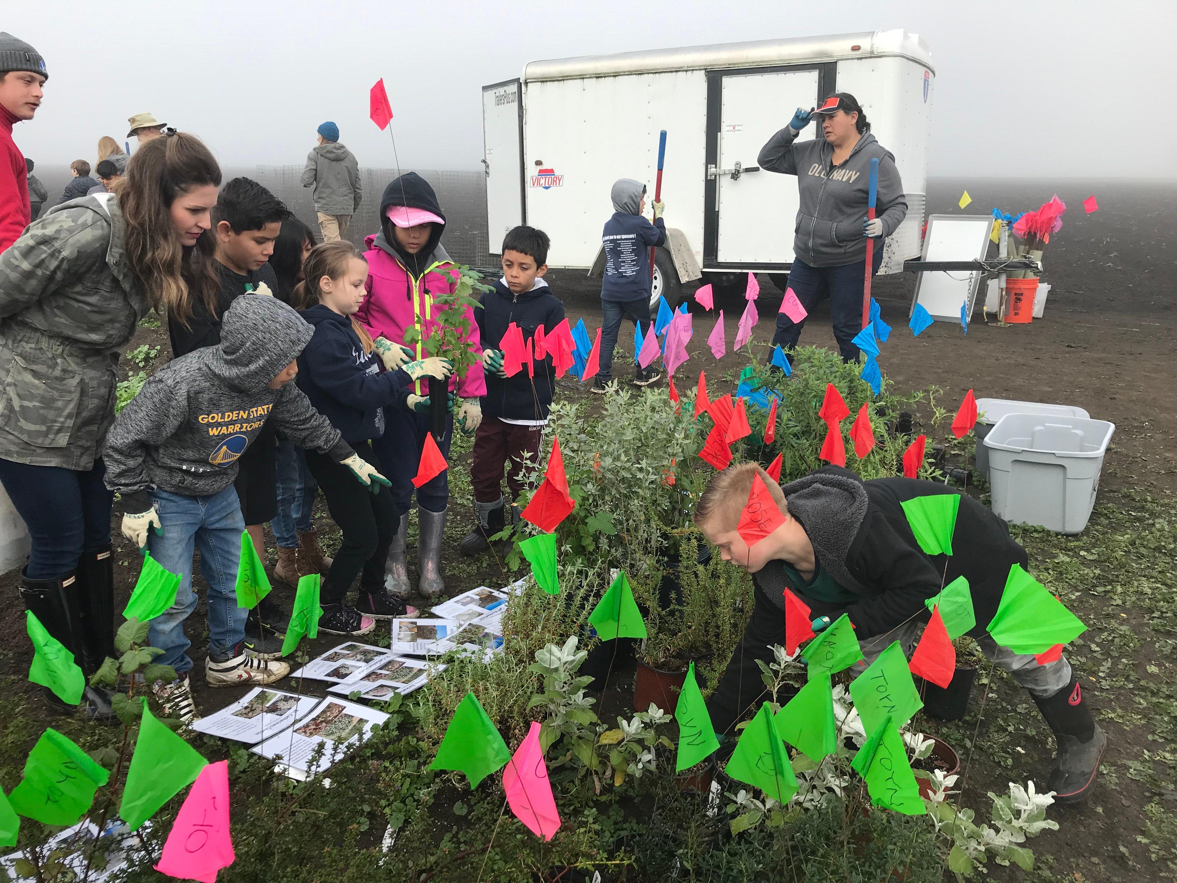 NPRAP - STRAW Hedgerow Planting - A.Pilon - 01-31-2020 - 34