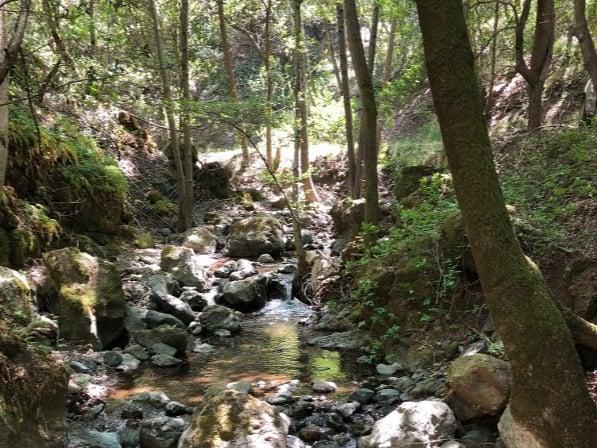 POST_Barrett Creek