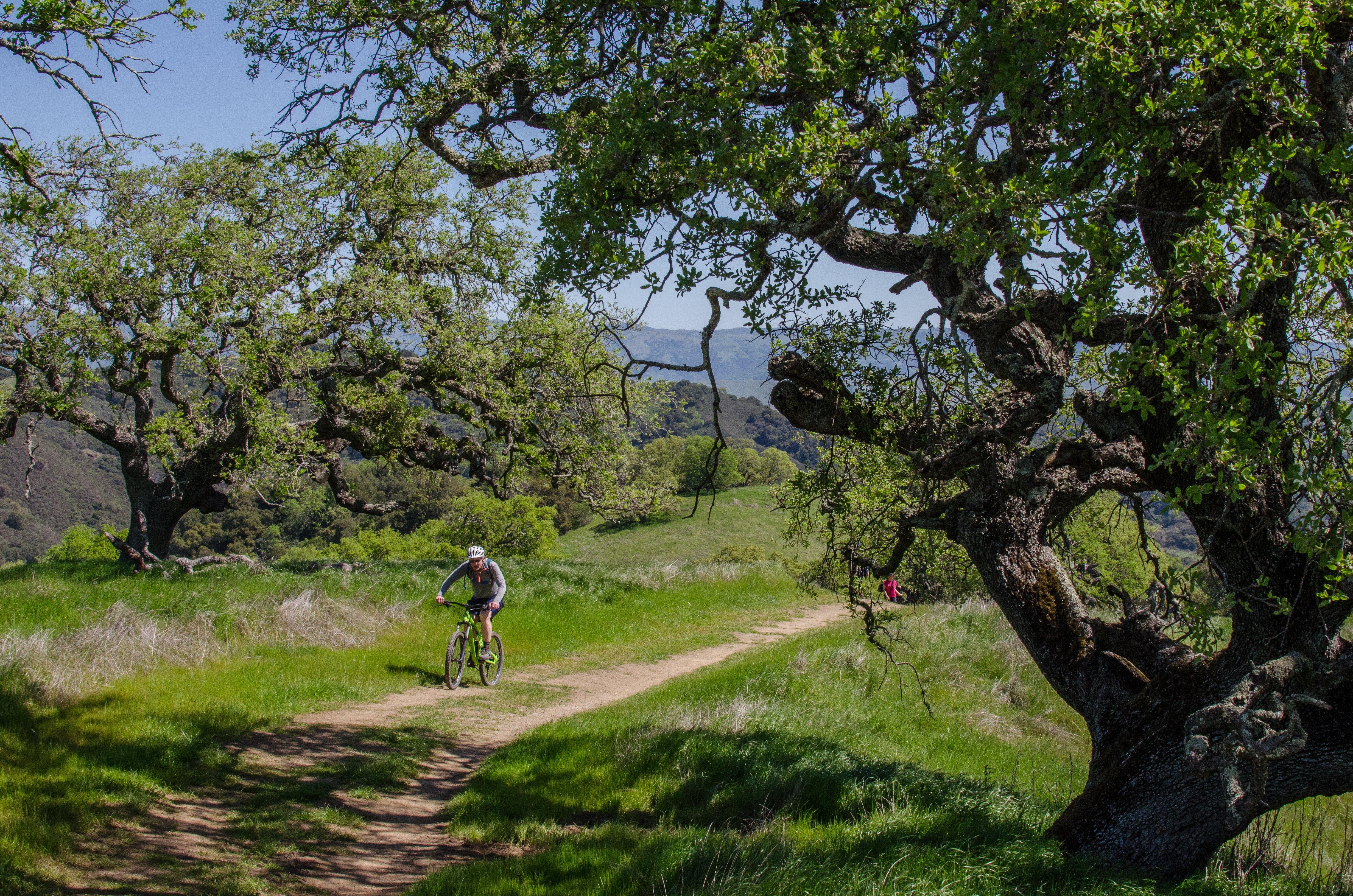 mountain-bike-rancho