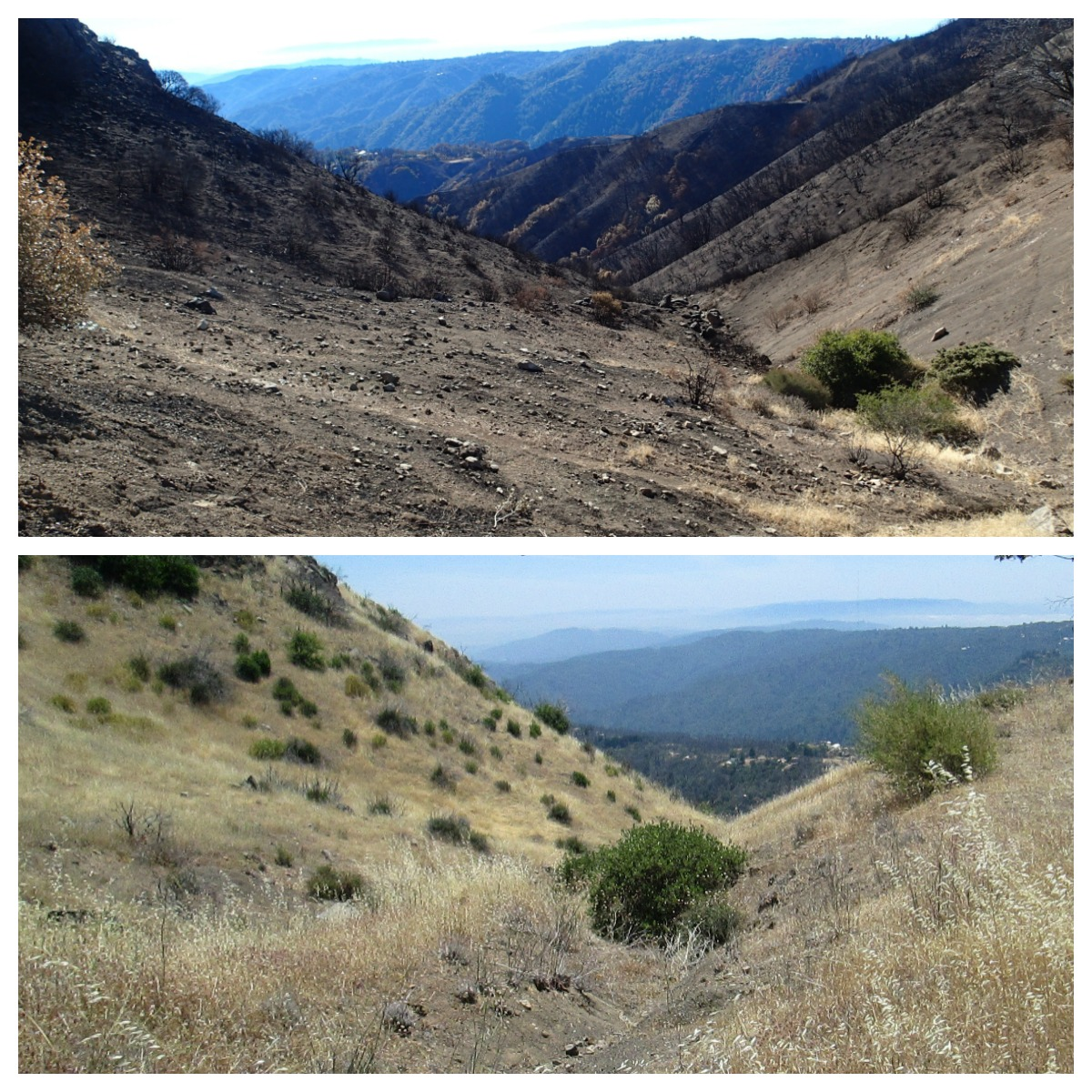 loma fire - station 8 before and after